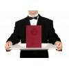 Дипломы,  аттестаты,  справки,  свидетельства, печати.